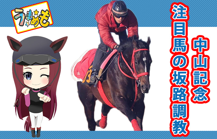 中山記念注目馬の坂路調教
